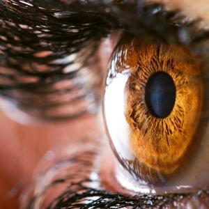 Riboflavin dosing regimens safely improve visual acuity in keratoconus, corneal ectasia